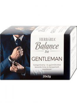 HERBÁRIA BALANCE TEA GENTLEMAN 20 FILTER