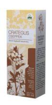 Bioextra crategus cseppek 50 ml