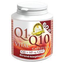 Celsus q1+q10 vital kapszula q1+60g 60 db