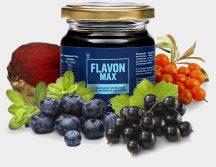FLAVON MAX (Flavonmax) 240g