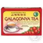 DR.CHEN GALAGONYA /HAWTHORN/ TEA FILT.
