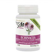 Dr.m prémium echinacea kapszula 30 db