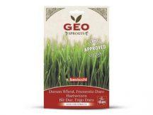 Bavicchi Bio Durumbúza csíráztatáshoz - Értékes fehérjék, vitaminok és emésztést segítő rost komplex.